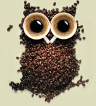 Coffee_Owl